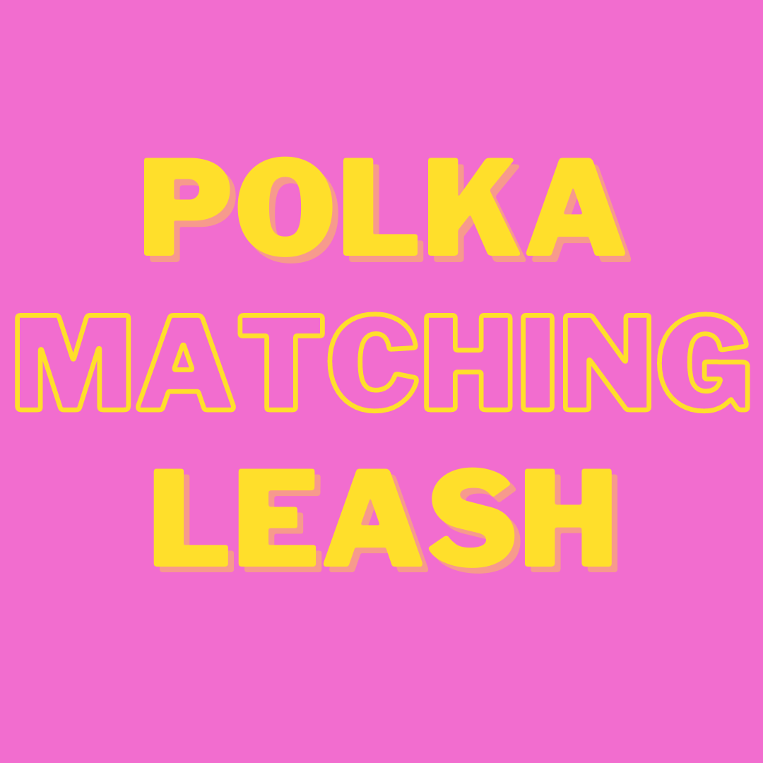 Polka Matching Leash + Rope Toy - Free