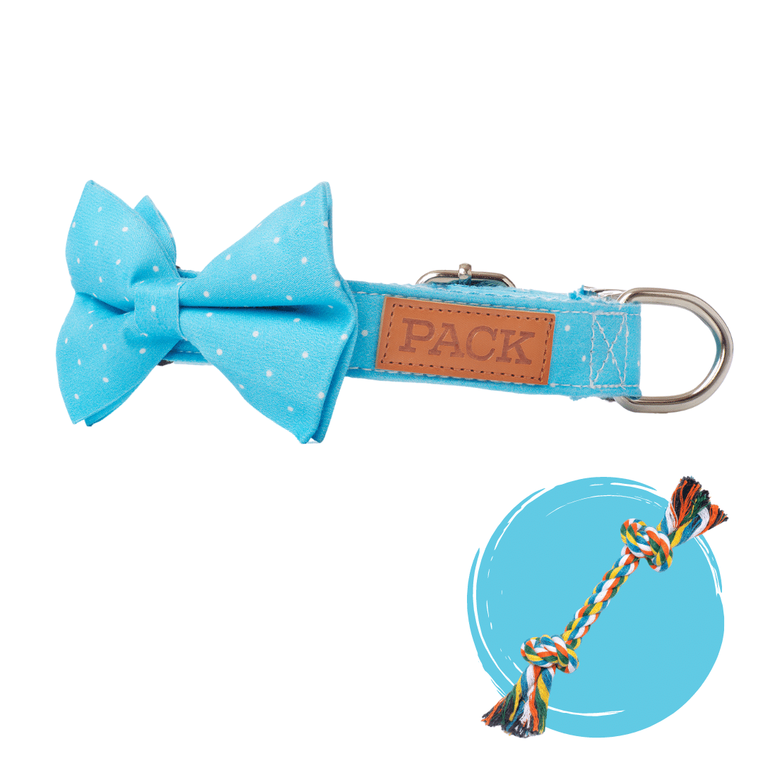 Polka + Rope Toy - Free Product