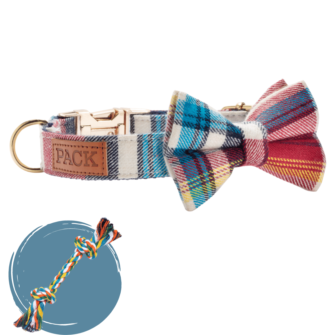 The Winston + Rope Toy - Free Product