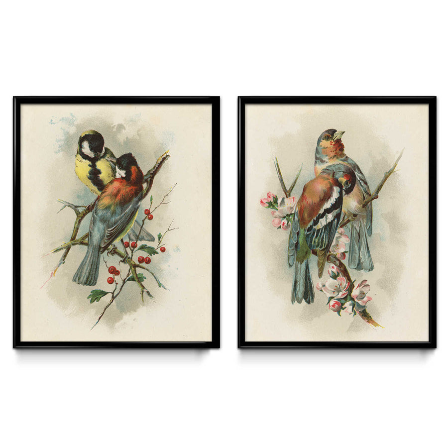 Shop for Beautiful Birds Set of 2 - VP1119 - Orion Wells