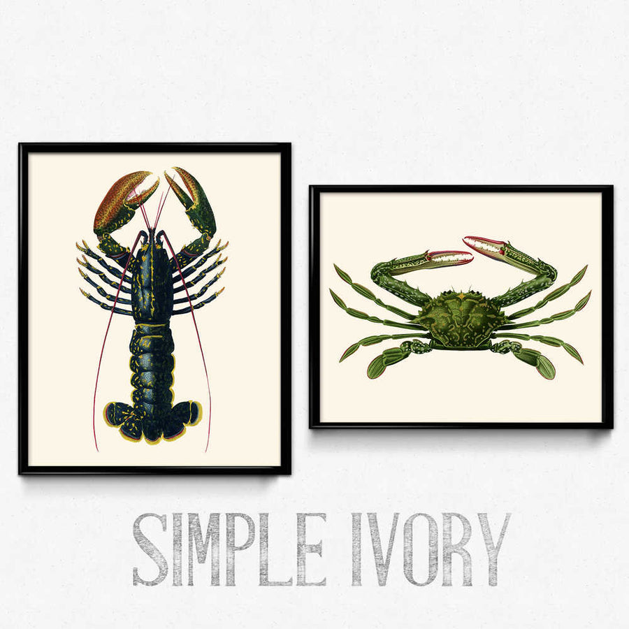 Osta Crab and Lobster Marine Prints -sarja 2 - Orion Wells