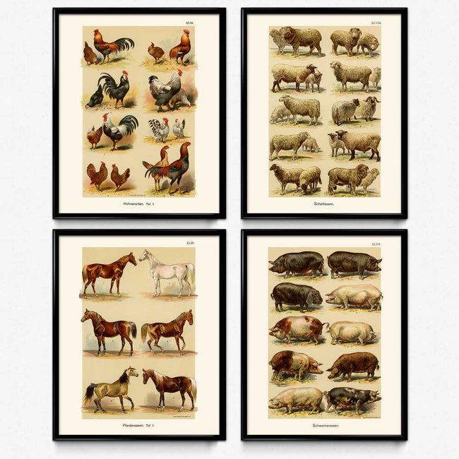 Shop for Farmhouse Vintage Print Set of 4 (VP1078) - Orion Wells