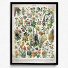 Shop for French Flowers Fleurs Vintage Print 2 - Orion Wells