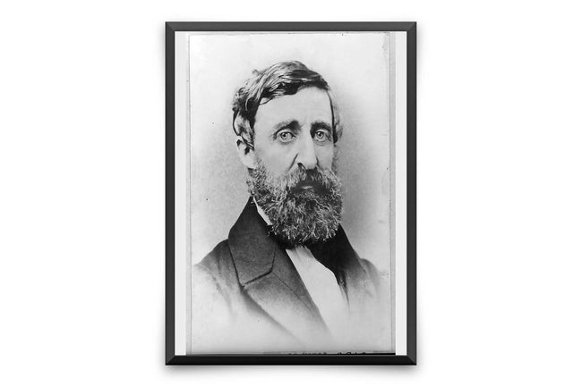 Shop for Henry David Thoreau Walden Photo - Henry David Thoreau Portrait American Writer Poet Philosopher Literary Picture Memorabilia Art VP1208 - Orion Wells