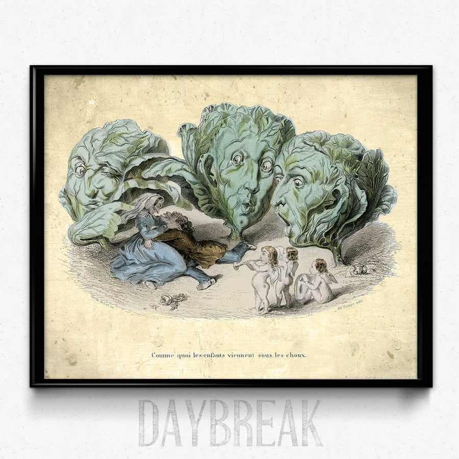Kitchen Humor Vintage Print 4 - Cabbage Heads - Orion Wells