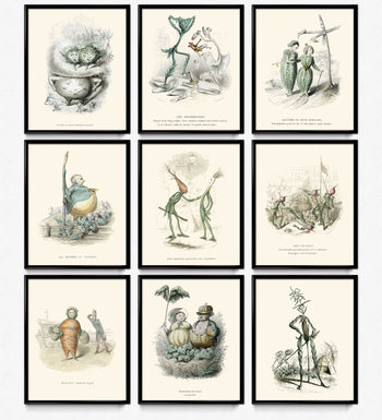 Kitchen Humor Vintage Prints Set of 9 - Vegetabilsk dekor - Varin VP1116 - Orion Wells