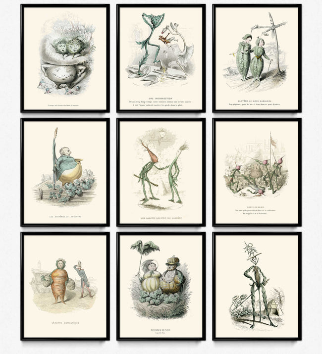 Kitchen Humor Vintage Prints Set of 9 - Vegetable Decor - Varin VP1116 - Orion Wells