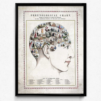 Køb Phrenology Head Vintage Print - VP1084 - Orion Wells