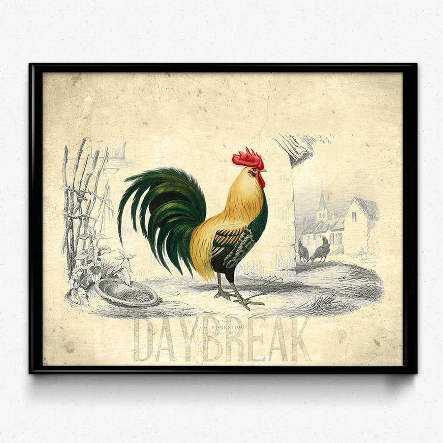 Shop for Farmhouse Rooster Vintage Print - Orion Wells