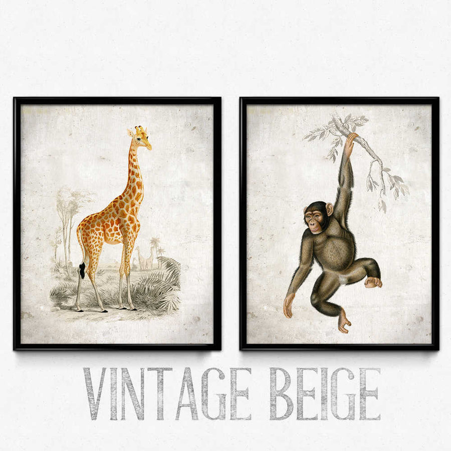 Ensemble de 2 tirages vintage Safari - Orion Wells