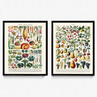 Shop for Fruits and Vegetables Vintage Print Set of 2 - Orion Wells