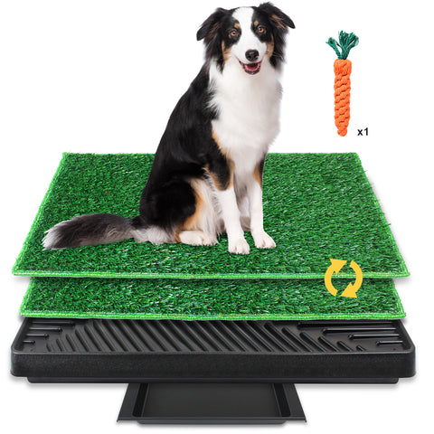 Dog Grass Pee Pad(S)