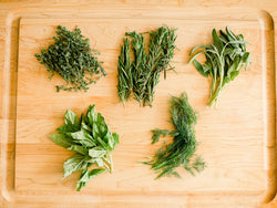 How to Harvest Your Herb Garden