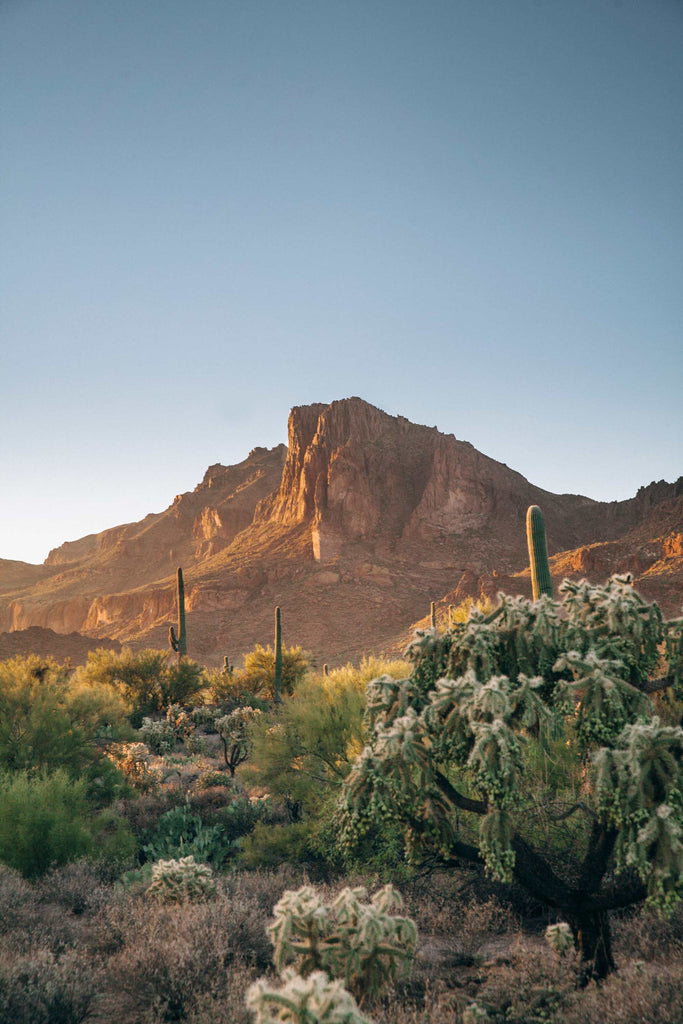 Black Friday Superstition Mountains Dinner | November 24th