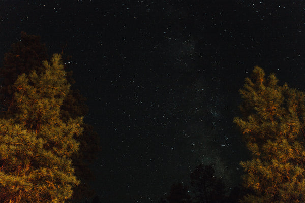 Flagstaff Star Party Wilderness Dinner | October 3, 2018