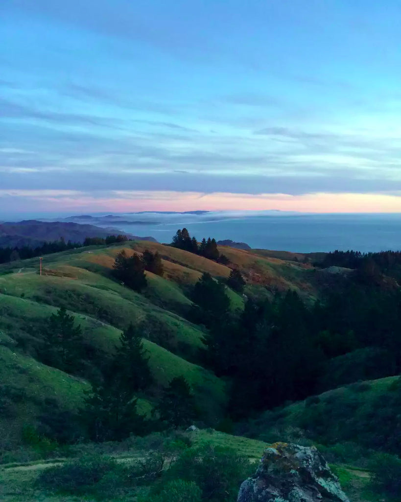 SF Bay Area, CA Wilderness Dinner | July 22nd
