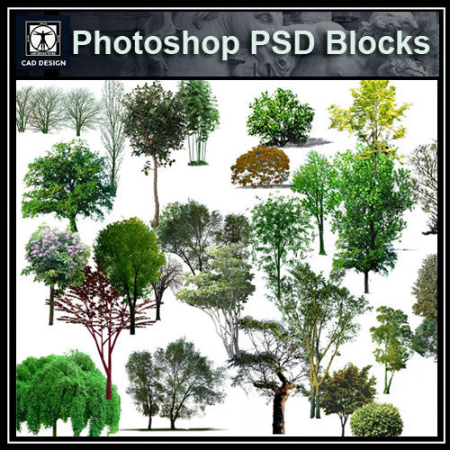 Photoshop PSD Tree Blocks 2