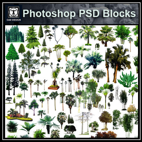 Photoshop PSD Tree Blocks 3 - CAD Design | Download CAD Drawings | AutoCAD Blocks | AutoCAD Symbols | CAD Drawings | Architecture Details│Landscape Details | See more about AutoCAD, Cad Drawing and Architecture Details