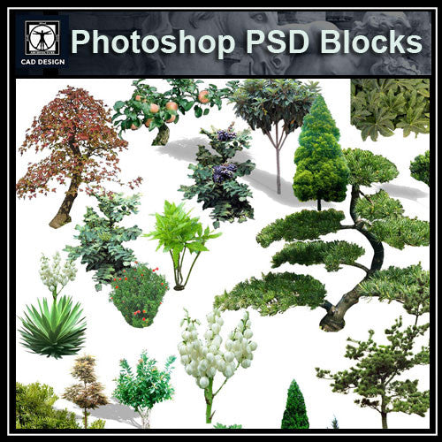 Photoshop PSD Landscape Tree 1