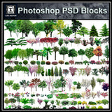 Photoshop PSD Landscape Tree 2 - CAD Design | Download CAD Drawings | AutoCAD Blocks | AutoCAD Symbols | CAD Drawings | Architecture Details│Landscape Details | See more about AutoCAD, Cad Drawing and Architecture Details
