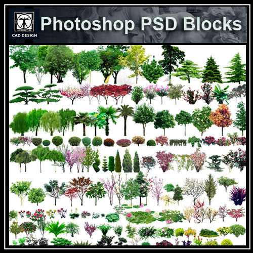 Photoshop PSD Landscape Tree 2