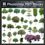 Photoshop PSD Tree Blocks 4 - CAD Design | Download CAD Drawings | AutoCAD Blocks | AutoCAD Symbols | CAD Drawings | Architecture Details│Landscape Details | See more about AutoCAD, Cad Drawing and Architecture Details