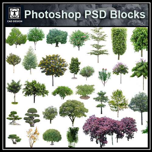 Photoshop PSD Tree Blocks 4