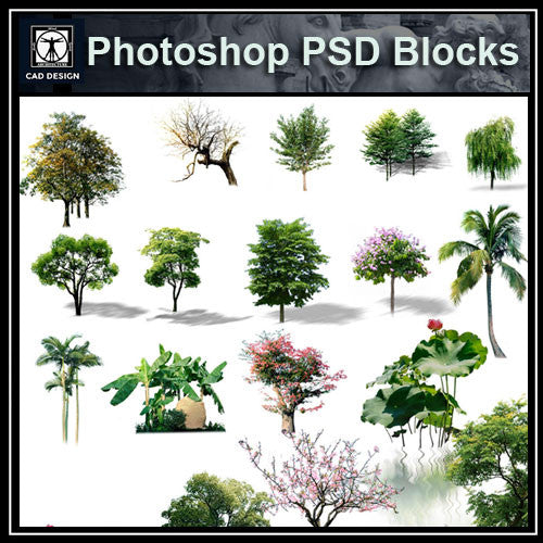 Photoshop PSD Landscape Tree 3 - CAD Design | Download CAD Drawings | AutoCAD Blocks | AutoCAD Symbols | CAD Drawings | Architecture Details│Landscape Details | See more about AutoCAD, Cad Drawing and Architecture Details