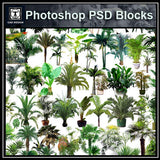 Photoshop PSD Tree Blocks 5 - CAD Design | Download CAD Drawings | AutoCAD Blocks | AutoCAD Symbols | CAD Drawings | Architecture Details│Landscape Details | See more about AutoCAD, Cad Drawing and Architecture Details