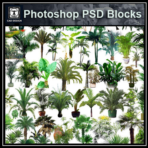 Photoshop PSD Tree Blocks 5