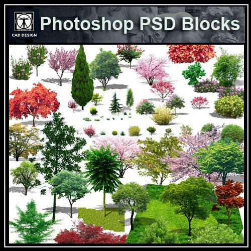 Photoshop PSD Landscape Tree 4