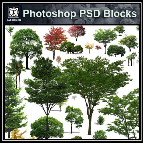 Photoshop PSD Landscape Tree 5