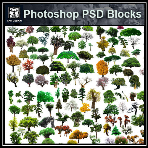 Photoshop PSD Landscape Tree 7