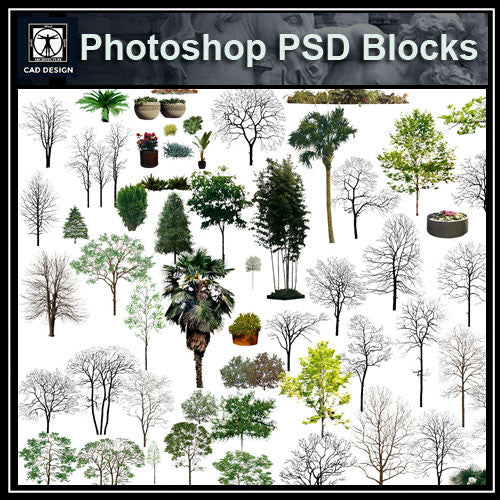 Photoshop PSD Landscape Tree 10 - CAD Design | Download CAD Drawings | AutoCAD Blocks | AutoCAD Symbols | CAD Drawings | Architecture Details│Landscape Details | See more about AutoCAD, Cad Drawing and Architecture Details