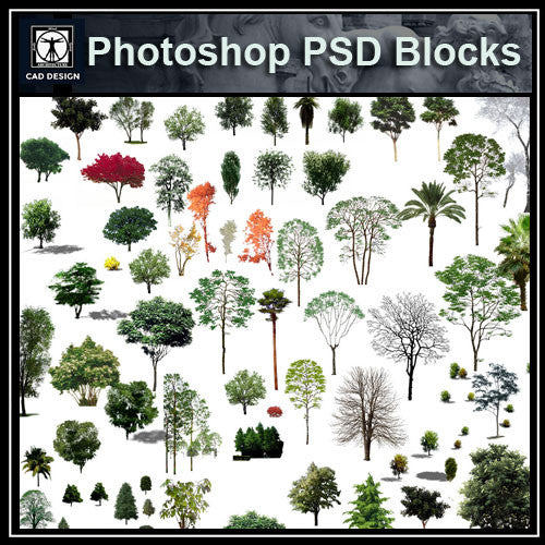 Photoshop PSD Landscape Tree 11 - CAD Design | Download CAD Drawings | AutoCAD Blocks | AutoCAD Symbols | CAD Drawings | Architecture Details│Landscape Details | See more about AutoCAD, Cad Drawing and Architecture Details