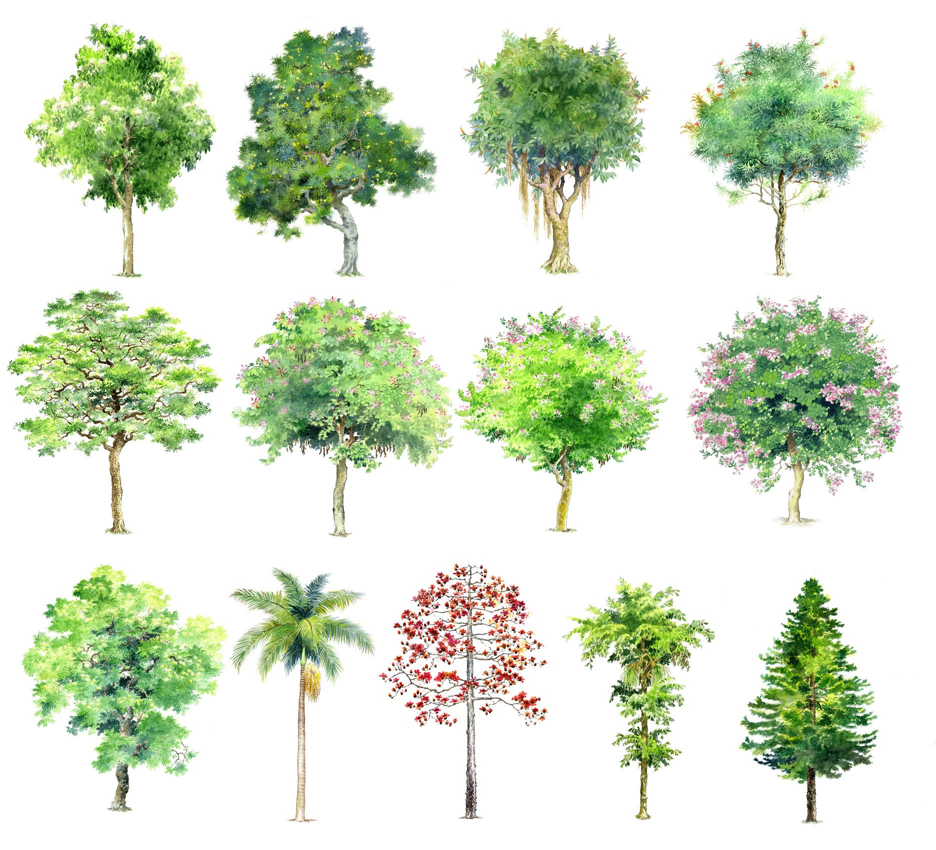 Hand Painted Psd Tree Blocks 1 Cad Design Free Cad