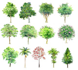 Hand-painted PSD Tree Blocks 1 - CAD Design | Download CAD Drawings | AutoCAD Blocks | AutoCAD Symbols | CAD Drawings | Architecture Details│Landscape Details | See more about AutoCAD, Cad Drawing and Architecture Details