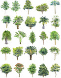 Hand-painted PSD Tree Blocks 2