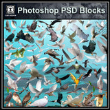 Free Photoshop PSD Bird Blocks