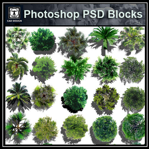 Photoshop PSD Landscape Tree Blocks 4 - CAD Design | Download CAD Drawings | AutoCAD Blocks | AutoCAD Symbols | CAD Drawings | Architecture Details│Landscape Details | See more about AutoCAD, Cad Drawing and Architecture Details