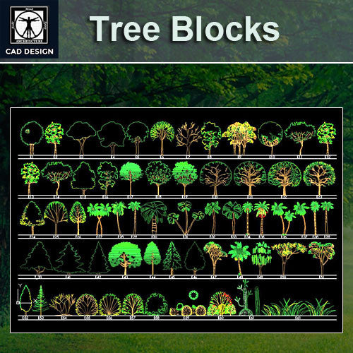 Tree blocks and elevation Set 3