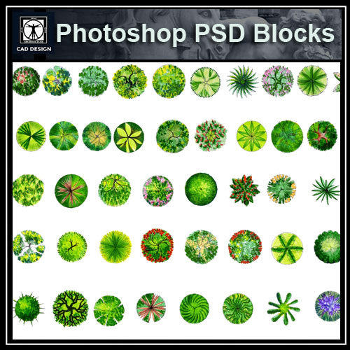 Photoshop PSD Landscape Tree Blocks 1 - CAD Design | Download CAD Drawings | AutoCAD Blocks | AutoCAD Symbols | CAD Drawings | Architecture Details│Landscape Details | See more about AutoCAD, Cad Drawing and Architecture Details