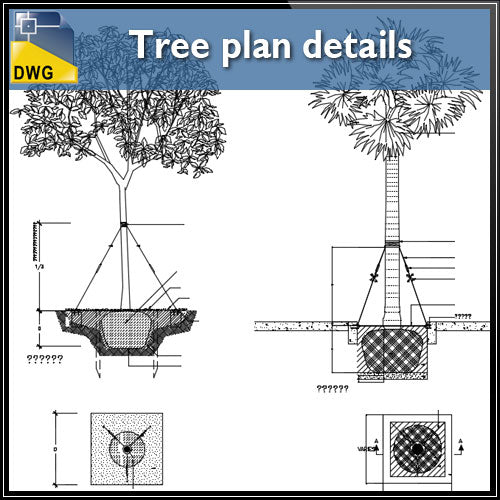 Tree plan details - CAD Design | Download CAD Drawings | AutoCAD Blocks | AutoCAD Symbols | CAD Drawings | Architecture Details│Landscape Details | See more about AutoCAD, Cad Drawing and Architecture Details