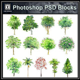 Hand-painted PSD Tree Blocks 1