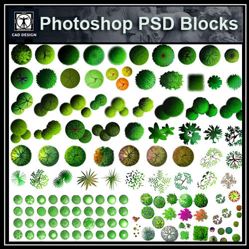 Photoshop PSD Landscape Tree Blocks 5 - CAD Design | Download CAD Drawings | AutoCAD Blocks | AutoCAD Symbols | CAD Drawings | Architecture Details│Landscape Details | See more about AutoCAD, Cad Drawing and Architecture Details