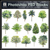 Hand-painted PSD Tree Blocks 2 - CAD Design | Download CAD Drawings | AutoCAD Blocks | AutoCAD Symbols | CAD Drawings | Architecture Details│Landscape Details | See more about AutoCAD, Cad Drawing and Architecture Details