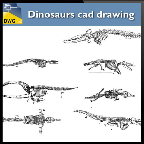 Dinosaurs CAD Blocks - CAD Design | Download CAD Drawings | AutoCAD Blocks | AutoCAD Symbols | CAD Drawings | Architecture Details│Landscape Details | See more about AutoCAD, Cad Drawing and Architecture Details