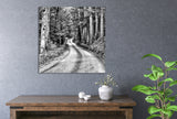 Black and White Road Art Print