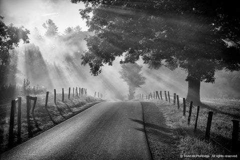 Black and White Country Road Artwork