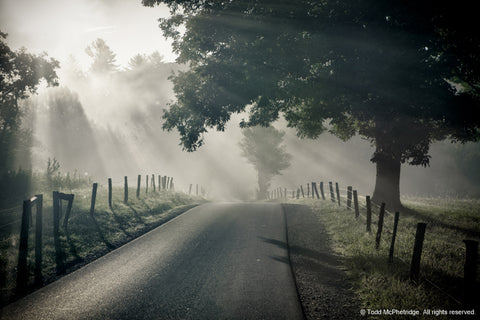 Country Road Art Prints